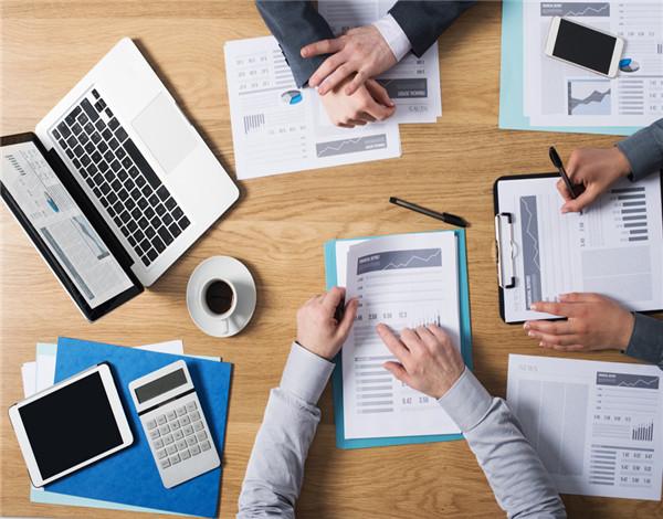 上海嘉定大红鹰国际官方网站公司简介集团公司财务审计的特点